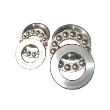 China Manufacturer Distributor Deep Groove Ball Bearings 6304 2RS Zz